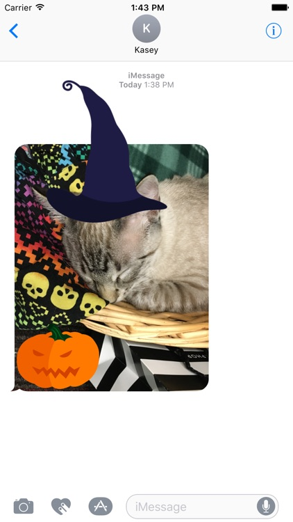 Halloween Sticker-Pack screenshot-4