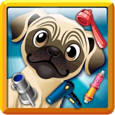 Activities of Dog Pet Care Clinic