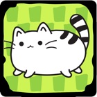 Cat Evolution - Clicker Game icon