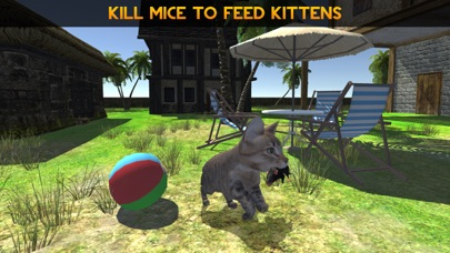 Kitten Cat Simulator 2016: Best pet simulation of mouse and