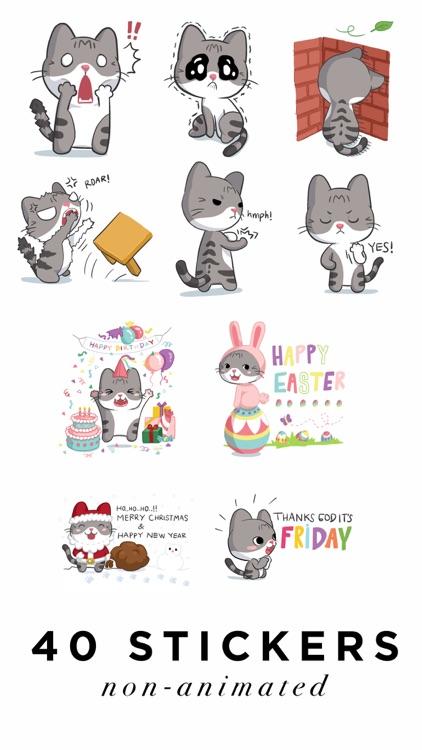 Meow the Tabby Cat screenshot-4