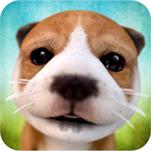 Dog Simulator 2015 iOS Hack Android Mod