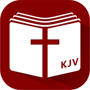The Holy Bible KJV: Bible Study&Daily Audio Bible App Data