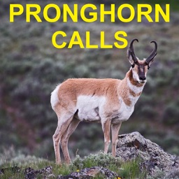 Pronghorn Hunting Calls & Big Game Calls HD