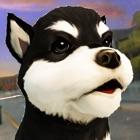 かわいい 犬 ねこ 大戦争 - シティ 子犬 白猫 ラッシュ icon