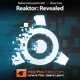 Course For NI 203 - Reaktor - Revealed