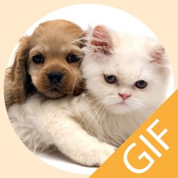 Pet Stickers - Cats & Dogs Animated Gif Stickers
