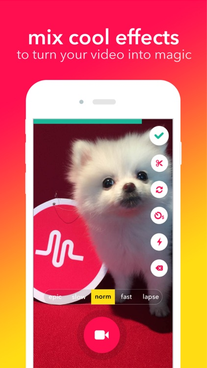 musical.ly - your video social network screenshot-3