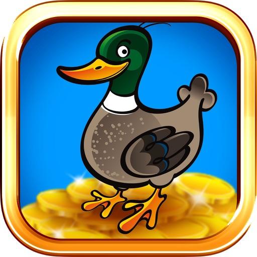 Ducks And Dollars