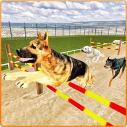 Dog Stunt & Training Simulator