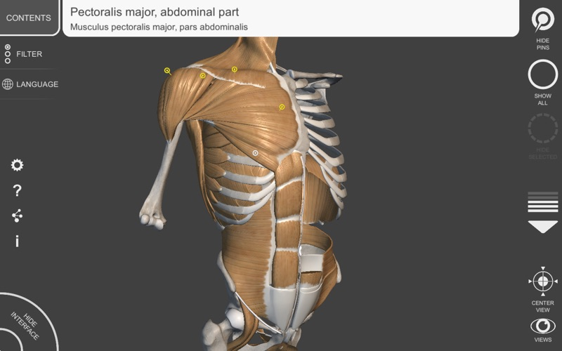 3d Anatomy For The Artist V 12 App Download App Store Ios Apps