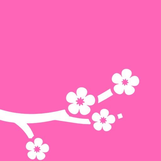 桜・お花見まとめニュース 開花情報やお花見のニュース