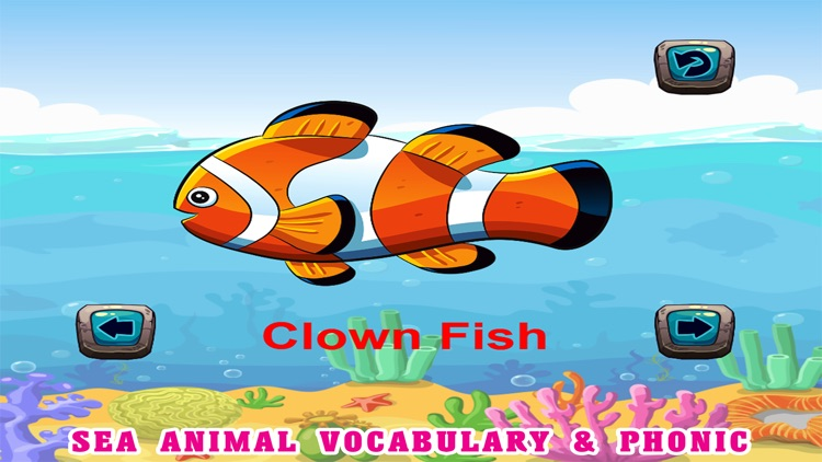 Sea Animals Kids Coloring Pages - Vocabulary Games screenshot-3