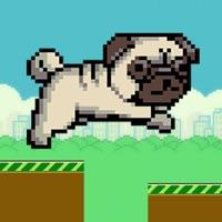Codes for Scream Cute Puppy Hack