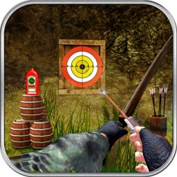Archery Bow Adventure
