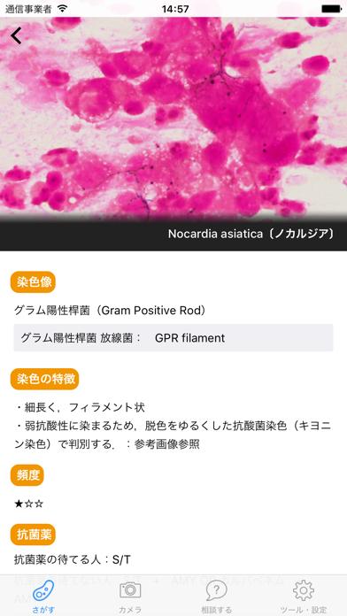 「グラレジ」グラム染色をアプリで学ぶのおすすめ画像3