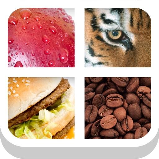 Close Up Pics Quiz - Guess the Word Trivia Games
