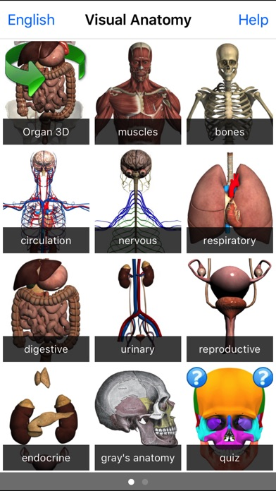 download Visual Anatomy apps 3