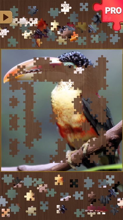 Jigsaw Puzzle Games PRO: Brain Training Jigsaws