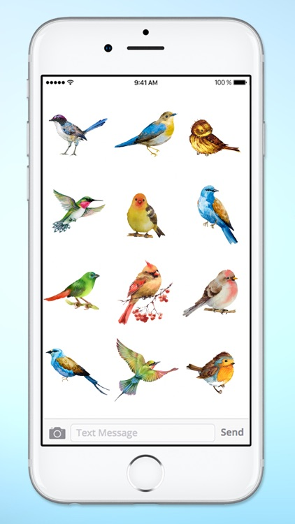 Watercolor Birds Sticker Pack screenshot-4