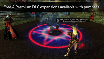 Neverwinter Nights screenshot 6