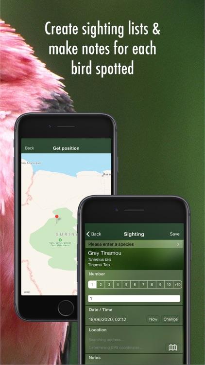 All Birds Guianas screenshot-6