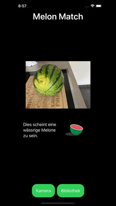 Melon MatchScreenshot von 4