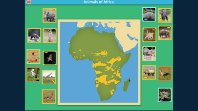 Montessori Animals of Africa screenshot 5