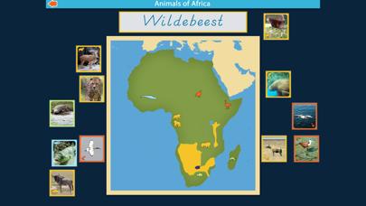Montessori Animals of Africa screenshot 4