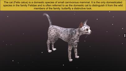Diversity in Living: Mammalia screenshot 6
