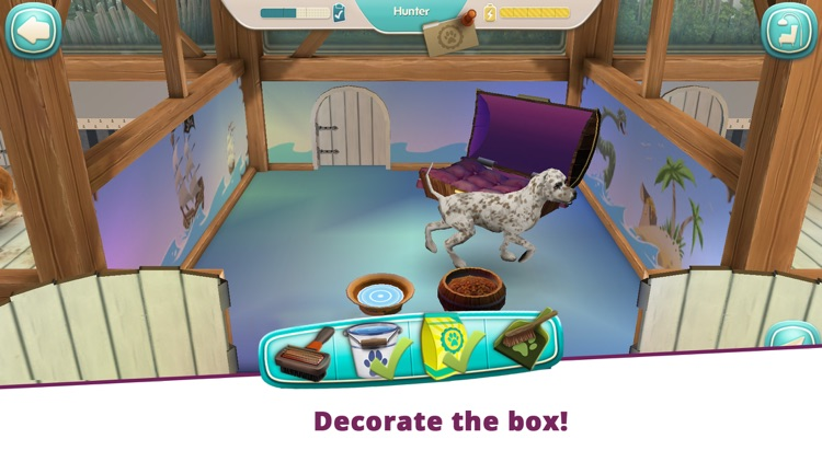 Dog Hotel - Play with dogs