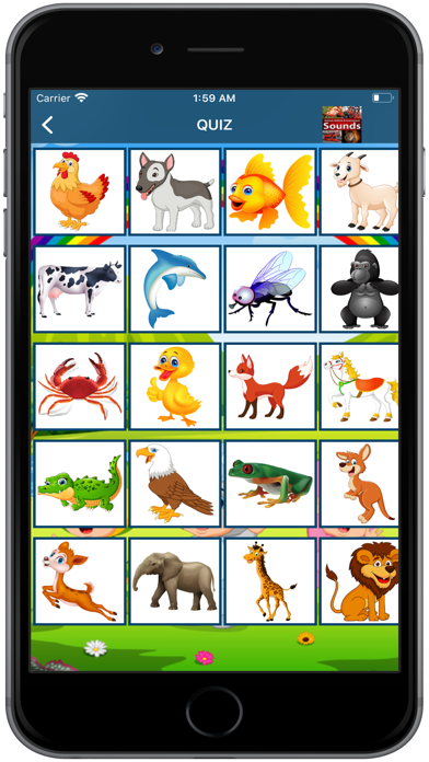 English for Kids Fast Learning screenshot 5