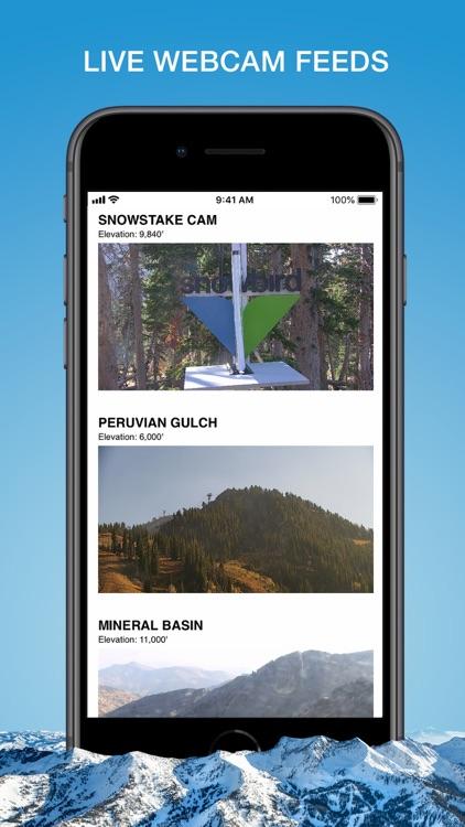 Snowbird Resort screenshot-8