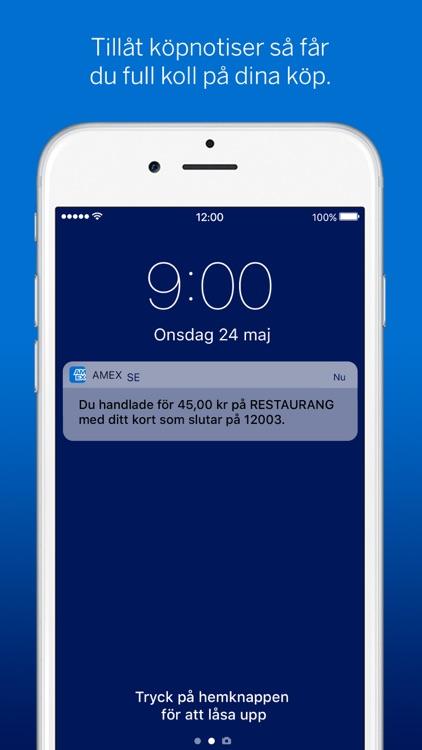 Amex SE screenshot-3