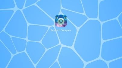 Beyond Compare screenshot 1