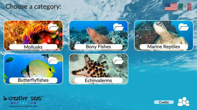 Marine Life Learning