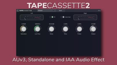 Tape Cassette 2