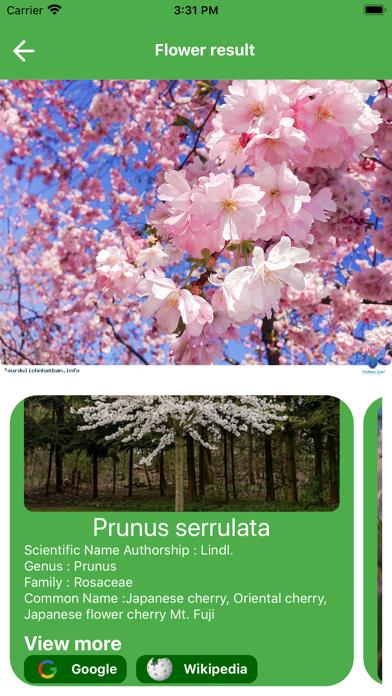 FindPlant-Plant Identification Screenshots