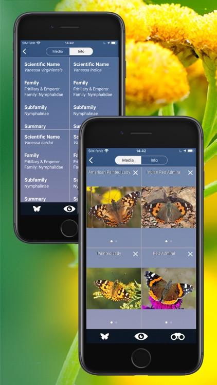 Butterfly Id - UK Field Guide screenshot-5