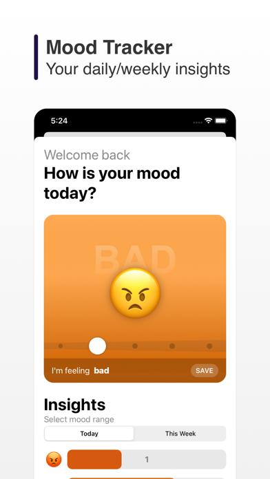 Widgetify - Add Custom Widgets screenshot 4