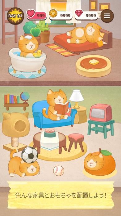 カフェヘーブン - 猫のサンドイッチ紹介画像7