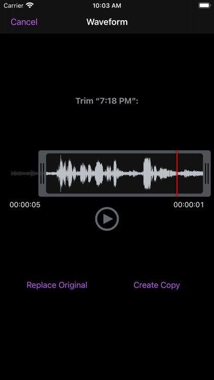 You Record Pro screenshot-3