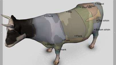 3D Bovine Anatomyのおすすめ画像4