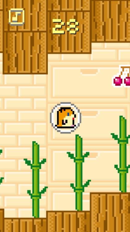 Float Up ! Bubble Hamster screenshot-4