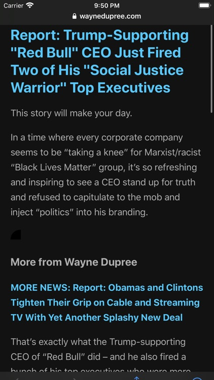 Conservative News screenshot-5