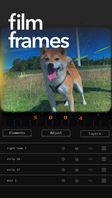 Retroframe: Film + Grain Maker screenshot 3