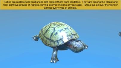 Diversity in Living: Reptilia screenshot 3