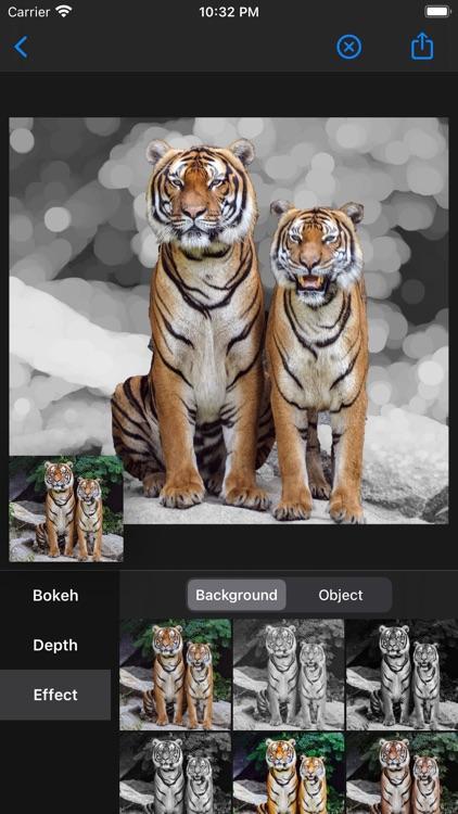 Circle Bokeh - After Focus screenshot-4