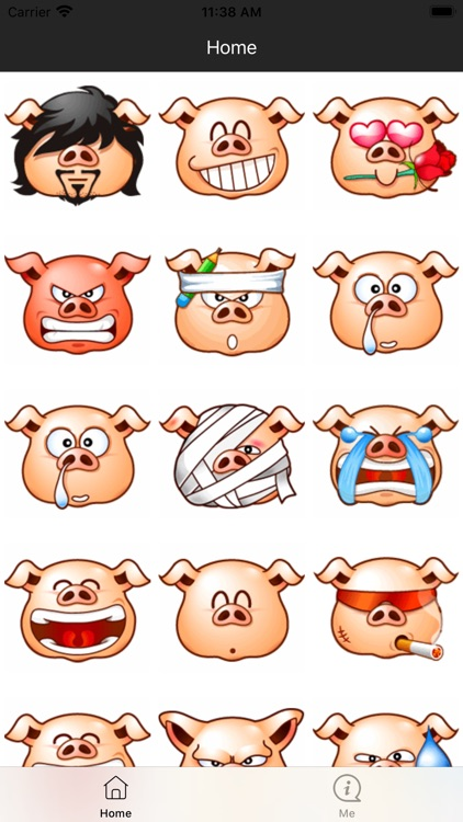 Funny Pig Head