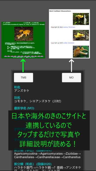 きのこ学名辞書:今日からあなたもきのこ博士!のおすすめ画像7
